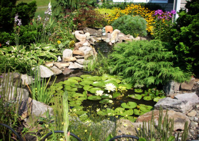 Riverview Pond Services